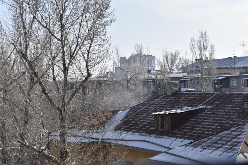Penultimate winter of the Poplars.