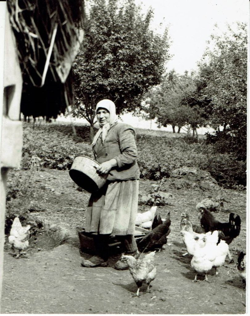Mother of Nikolai while feeding the chickens on their property in the Ukraine